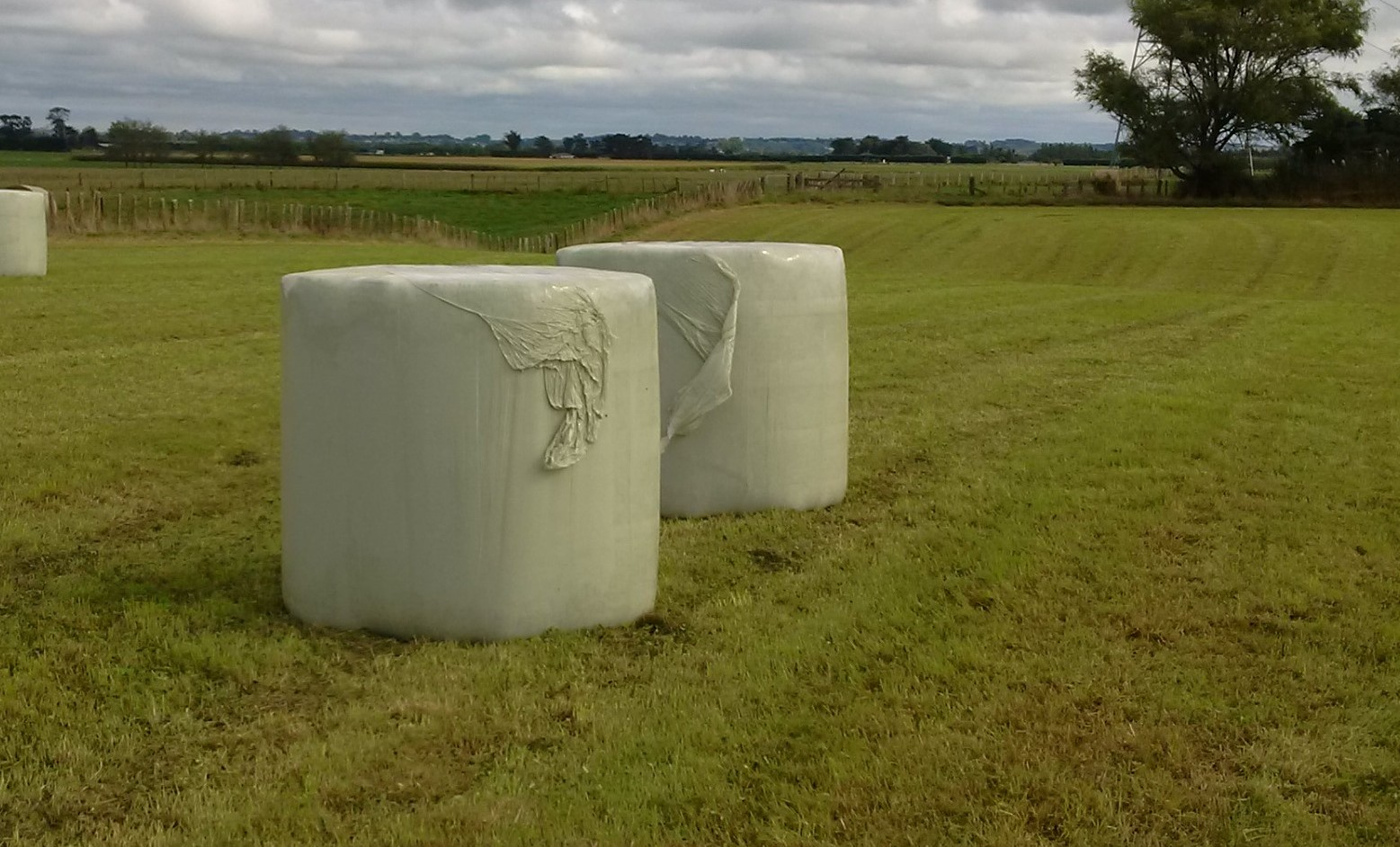 SilaCORD Bale Wrap On Bales