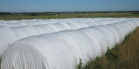 Silage Tubes 1 In Use